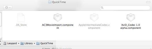 QuickTime Codecs avi divx